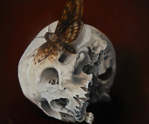art, creepy, and moth image