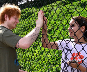 ed sheeran and fan image