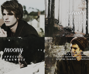 harry potter, hogwarts, and the marauders image