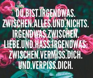 liebe, true, and hass image