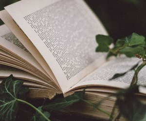 books, life, and nature image