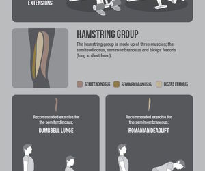 calves, fitness, and health image