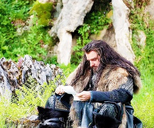 the hobbit and thorin oakenshield image