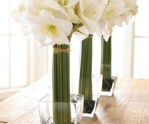 decor, floral arrangement, and flower arrangement image