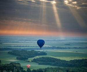 balloons, nature, and sky image