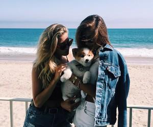 girl, beach, and dog image