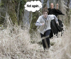funny, harry potter, and new moon image