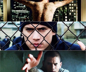 prison break and scofield image