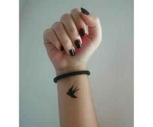 beautiful, bird, and black image