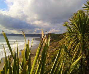 beach, landscape, and nz image
