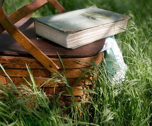 book, grass, and basket image