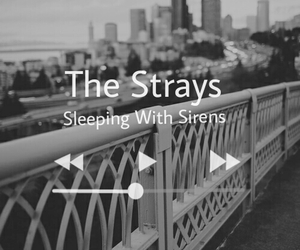 sleeping with sirens, black and white, and grunge image