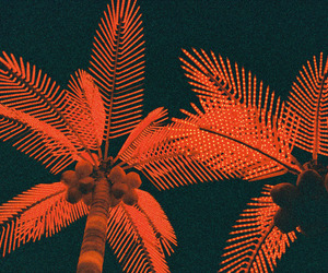 palms, red, and tree image