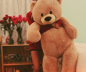 flowers, roses, and teddy bear image