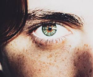 brown, eyebrows, and eyes image