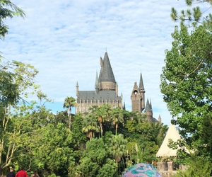 hogwarts, florida, and harrypotter image