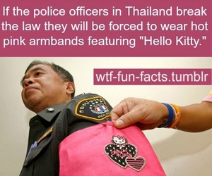 funny, hello kitty, and lol image