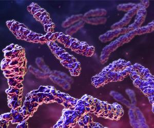 chromosome image