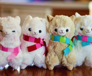 alpacas, aw, and cute image