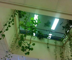 plants, green, and neon image