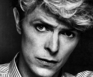 black and white, bowie, and david image