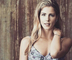 arrow, emily bett rickards, and Felicity image