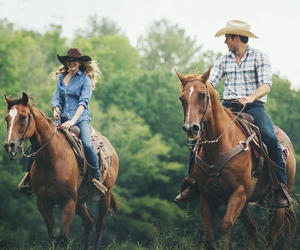 love, the longest ride, and horse image