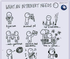 introvert and solitude image