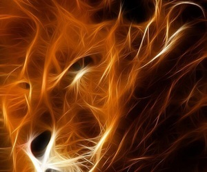 fire, lion, and strong image