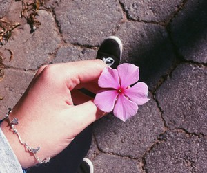 acessories, flowers, and grunge image