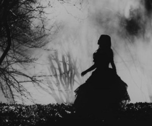 dark, forest, and alice image