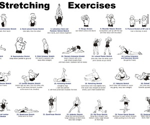 fitness and stretching image