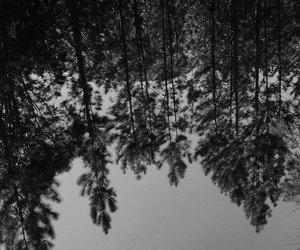 alternative, grunge, and black and white image