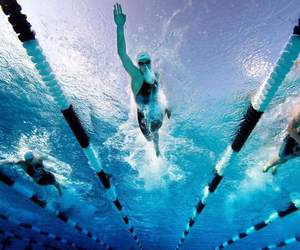 pool, race, and swimmers image
