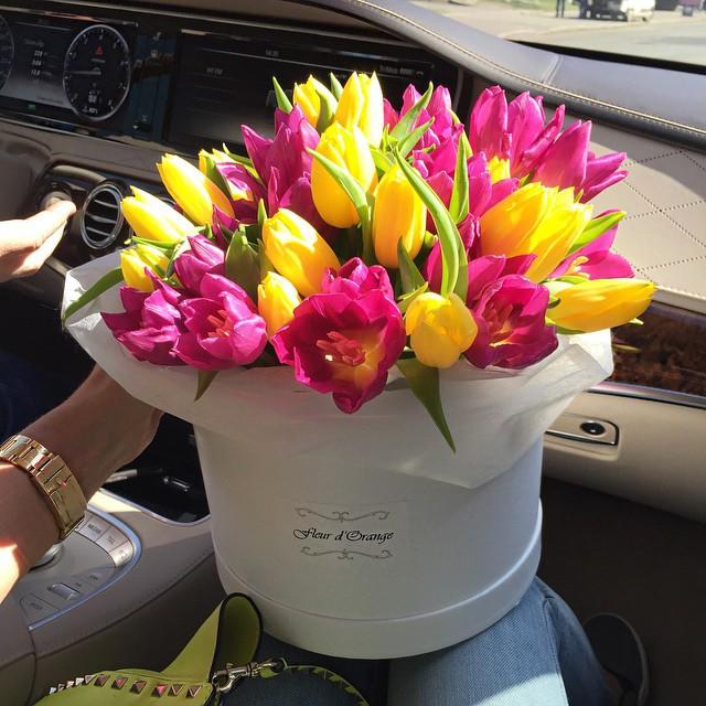 D Flores Tumblr