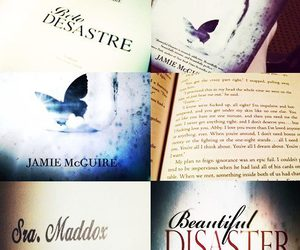 beautiful disaster and book image