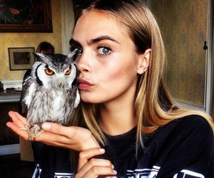 cara delevingne, model, and owl image