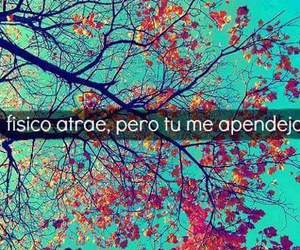 frases, me apendejas, and apendejas image