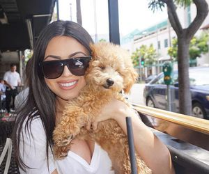 date, dog, and longhair image