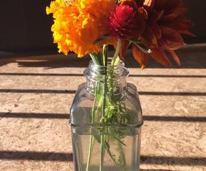 flowers, orange, and vase image
