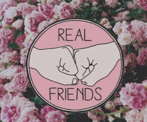 friends, flowers, and real image