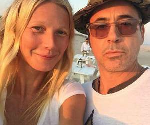 robert downey jr and pepperony image