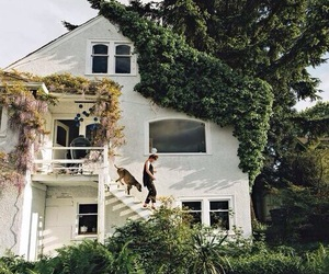house, dog, and home image