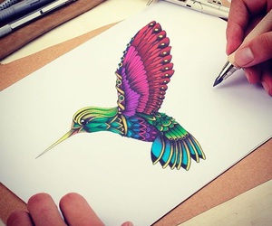 drawing, draw, and bird image