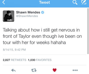 Taylor Swift, shawn mendes, and magcon image