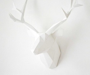 white, animal, and art image