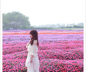 dress, flower, and nature image
