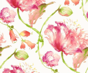 flowers, background, and wallpaper image