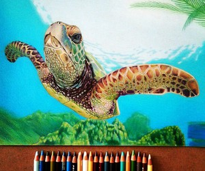 art, turtle, and colorful image