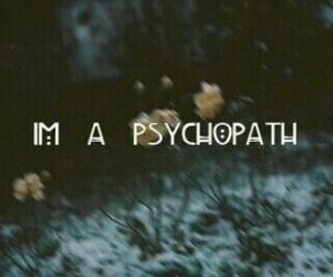 psychopath, grunge, and ahs image